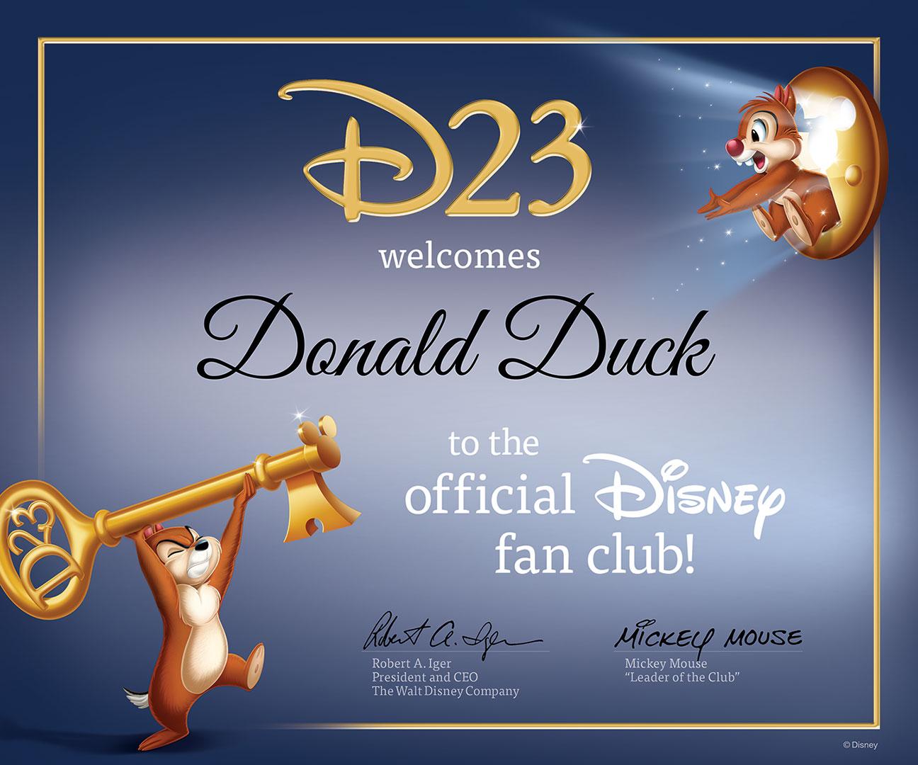 D23 Certificate